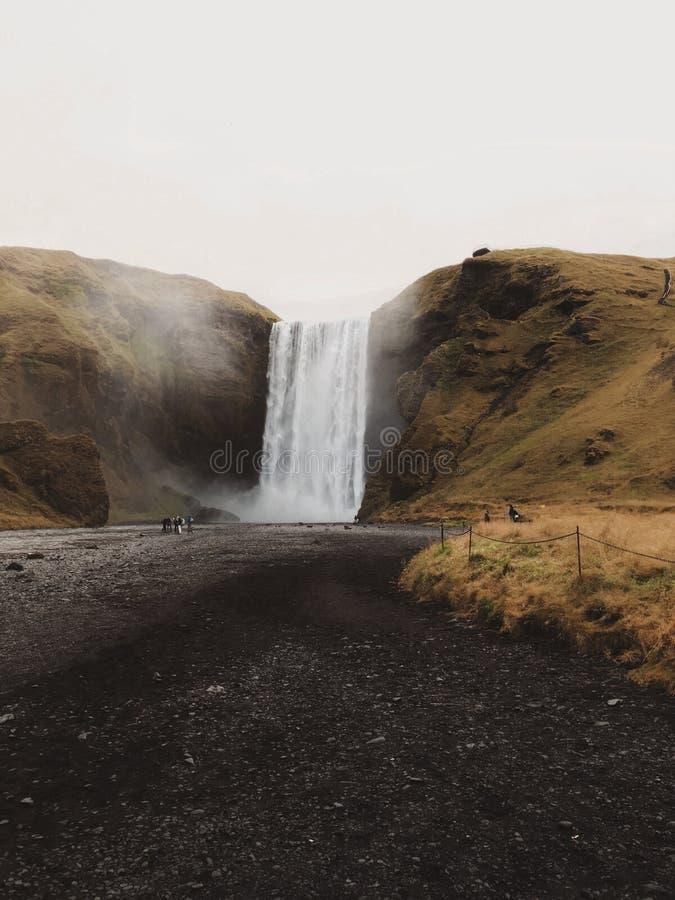 Cascade islandaise Skogar photos stock