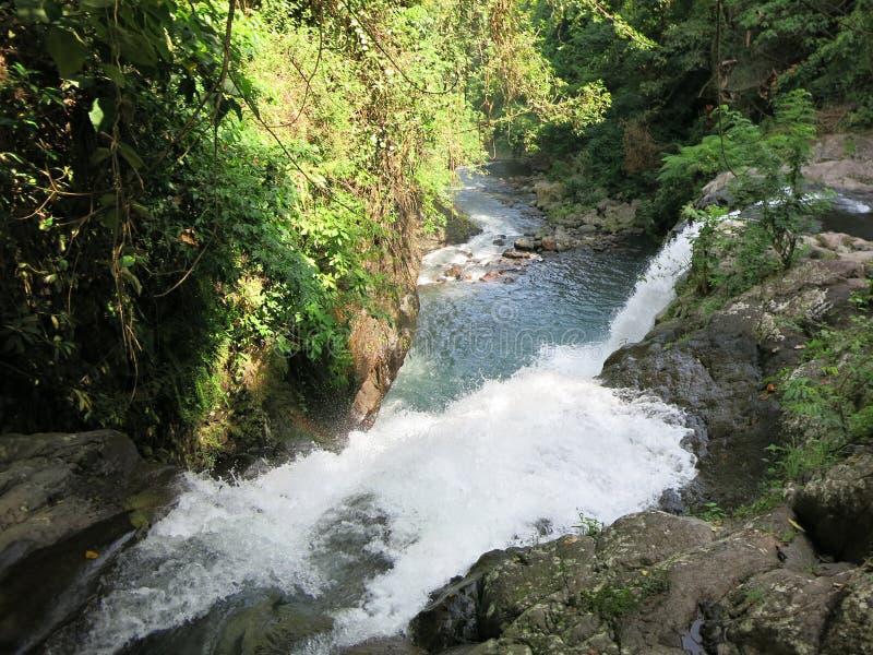 Cascade jumelle dans le jardin secret de Sambangan dans Bali, Indon?sie images stock