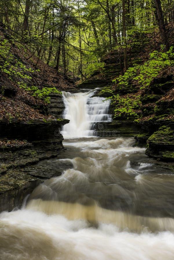 Cascade - léchez le canyon de ruisseau - parc de Sweedler - Ithaca, New York image stock