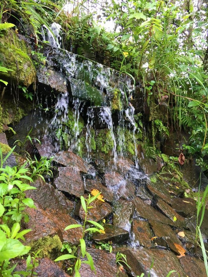 Cascade minuscule dans la ville d'Iguazu de jungle d'Amazone photographie stock libre de droits