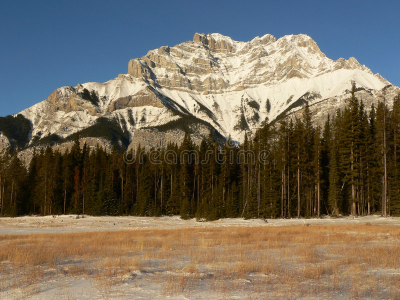 Cascade Mountain in Winter royalty free stock photography