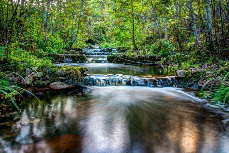 Cascade par la vallée de forêt image stock