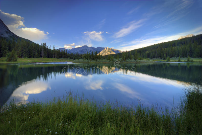 Download Cascade Ponds stock image. Image of pond, rugged, trees - 20995323