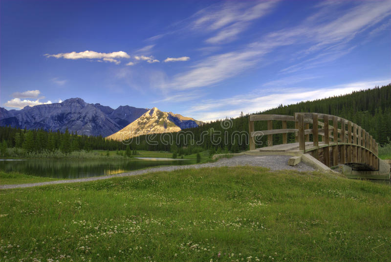 Cascade Ponds royalty free stock photos