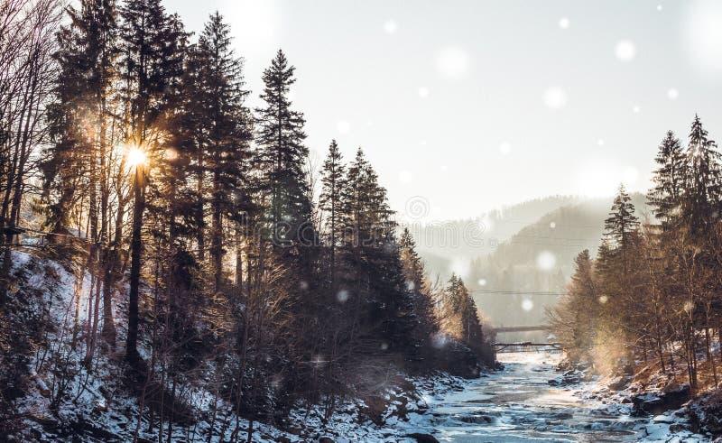 Cascade Probiy sur la rivière Prut Une des attractions touristiques de la station de sports d'hiver Yaremche, l'Ukraine photos stock