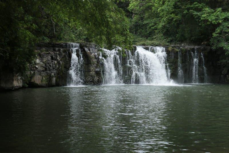 Cascade profondément dans le Forrest photo stock