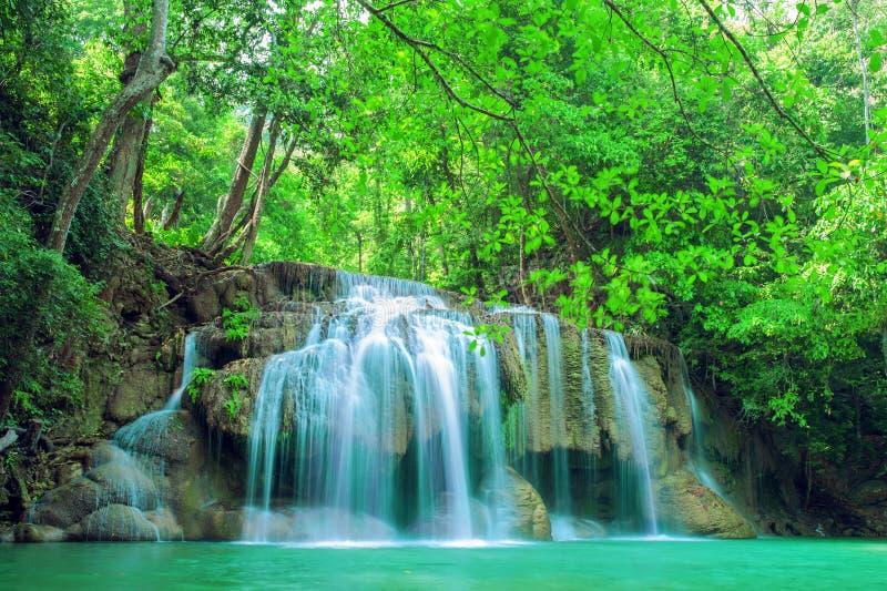 Cascade profonde de forêt images libres de droits