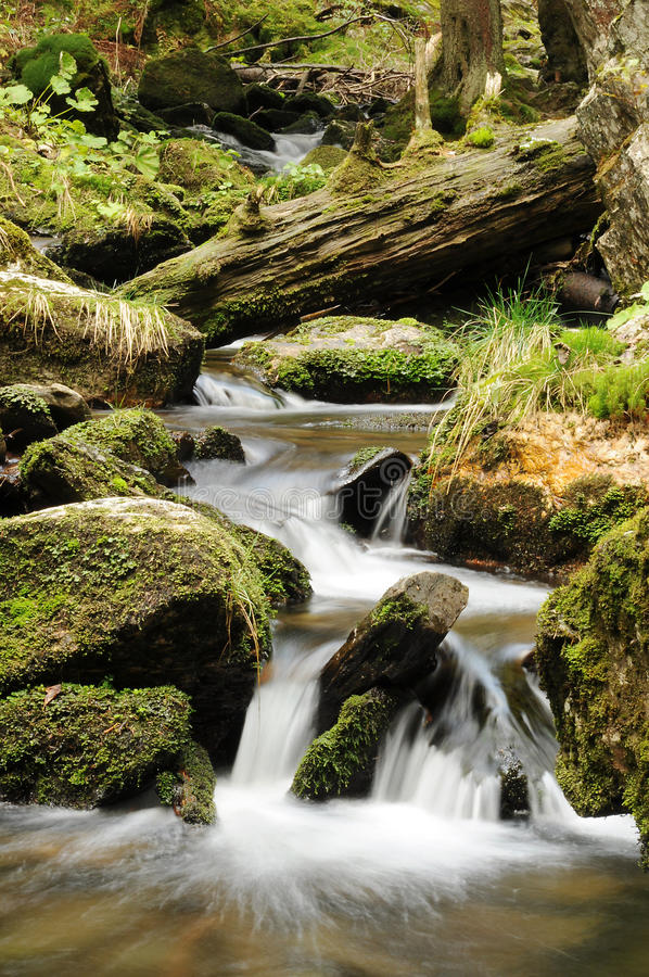 Cascade On The River Stock Photography