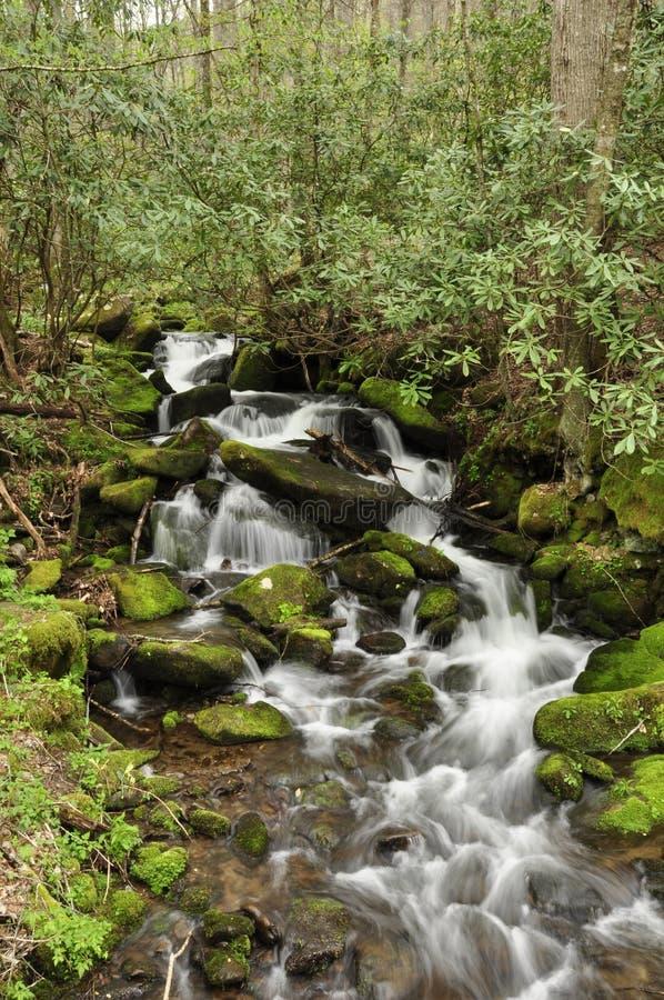 Cascade saisonnière image stock