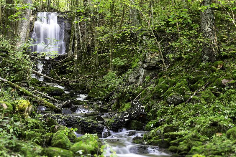 Cascade and stream royalty free stock photos