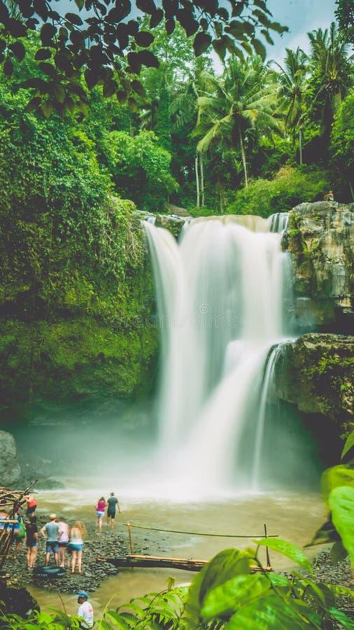 Cascade stupéfiante de Tegenungan près d'Ubud dans Bali, Indonésie images libres de droits