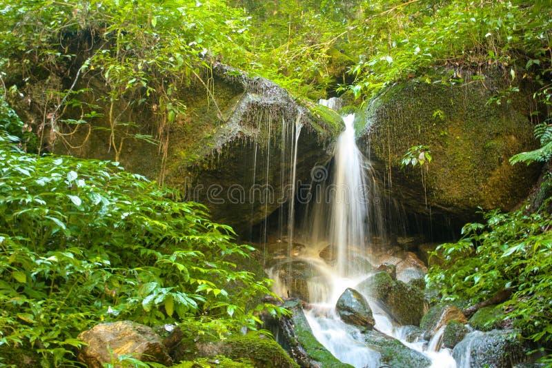 Cascade sur le chemin à la vallée de langtang photos stock