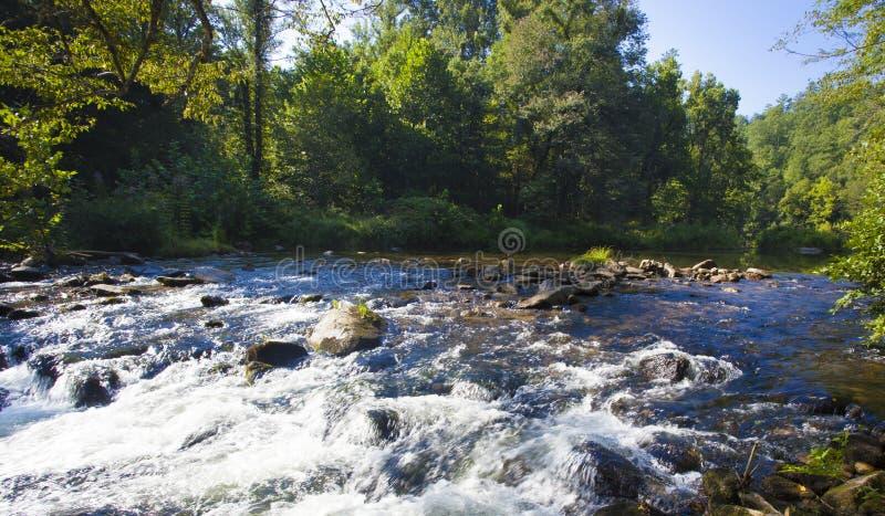 Cascade sur Wilson Creek image stock