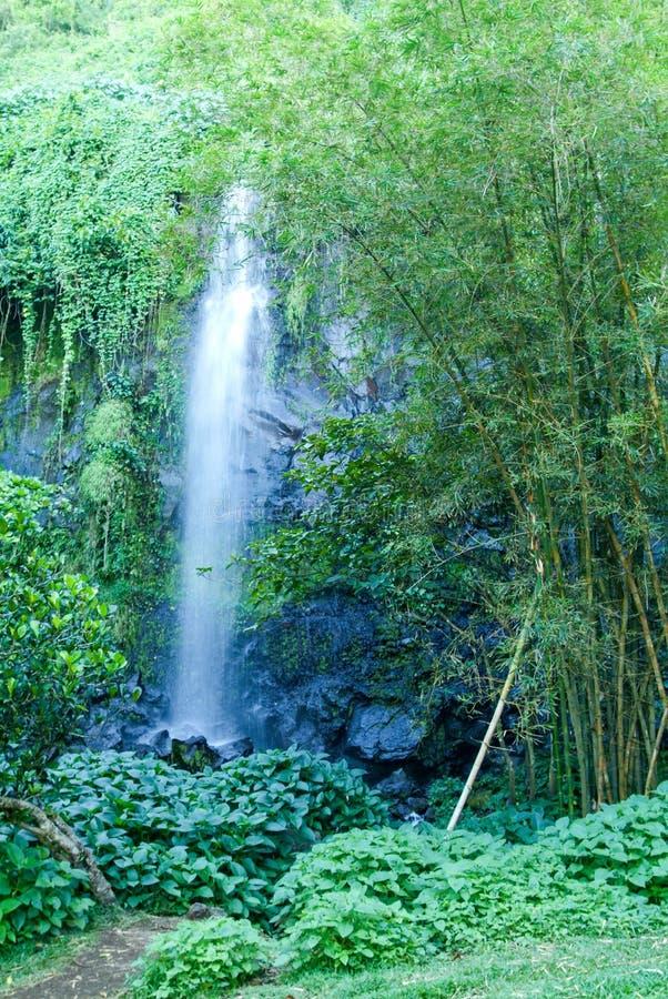 Cascade tropicale de St Rose sur la La Reunion Island photographie stock libre de droits