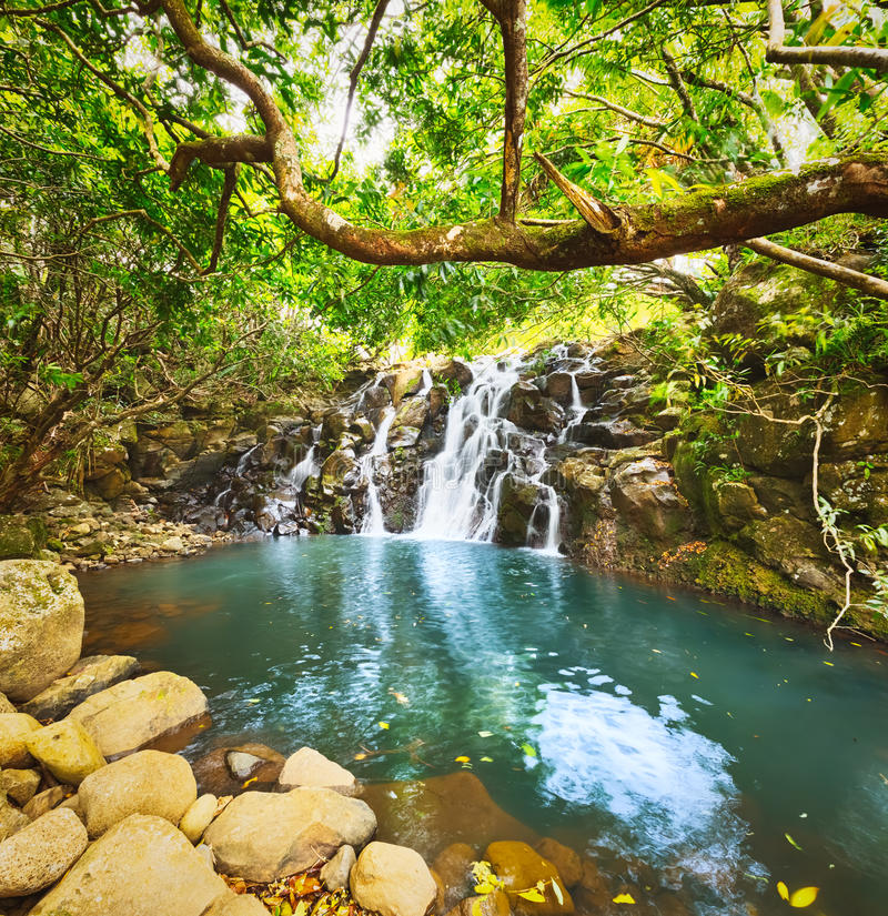 Cascade Vacoas waterfall. Mauritius. Scenic Cascade Vacoas waterfall. Mauritius island stock images