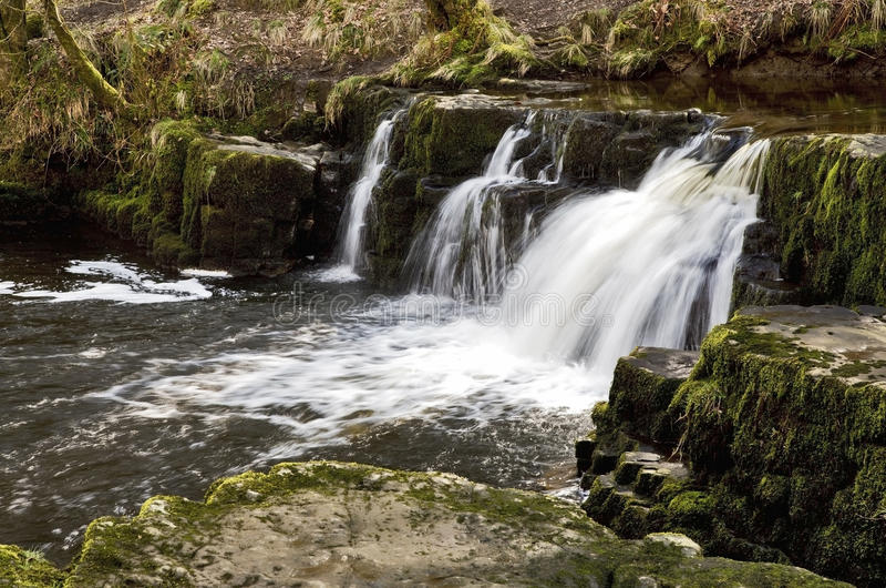 Cascade and waterfall on the Afon Pyrddin royalty free stock photo