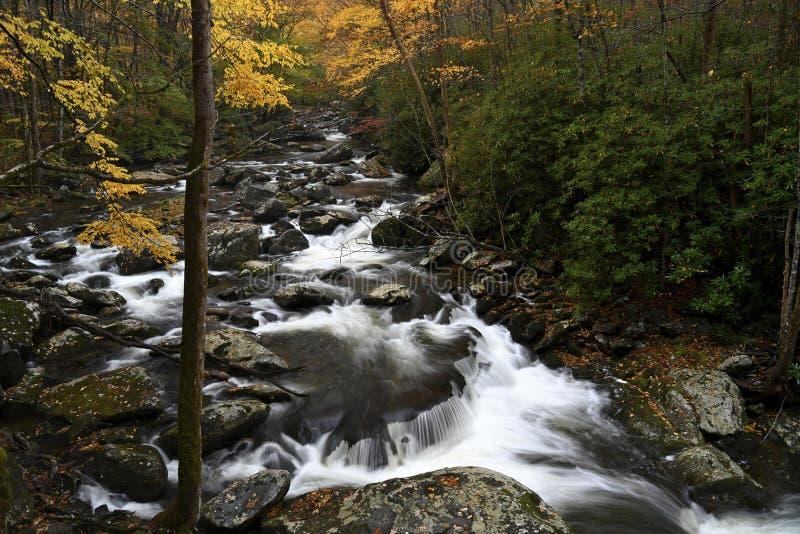 Cascade in Weinig Duifrivier in de Herfst royalty-vrije stock afbeelding