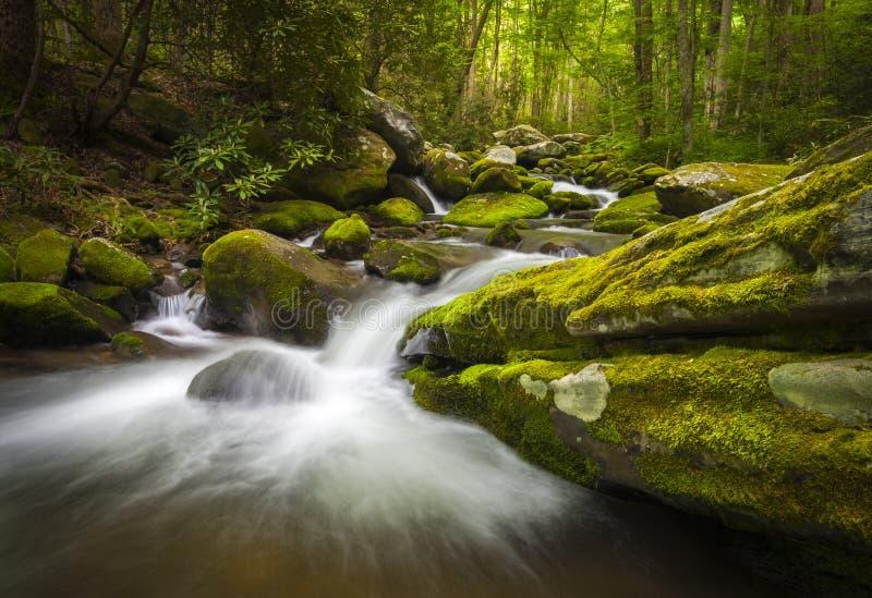 Cascades à écriture ligne par ligne de Gatlinburg TN de stationnement national de Great Smoky Mountains image libre de droits