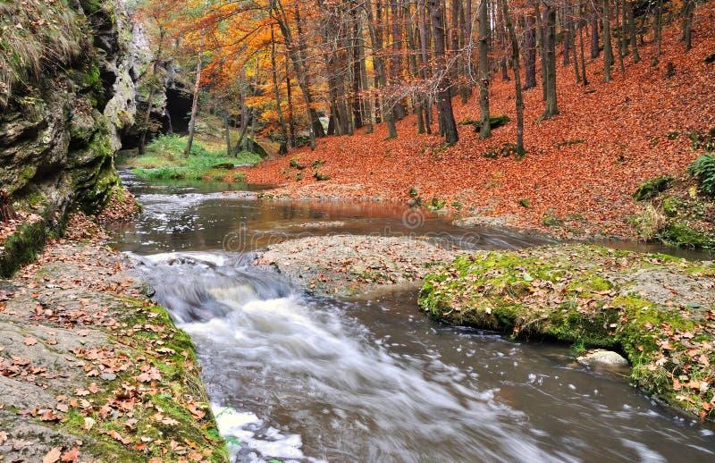 Cascades à écriture ligne par ligne en automne photo stock