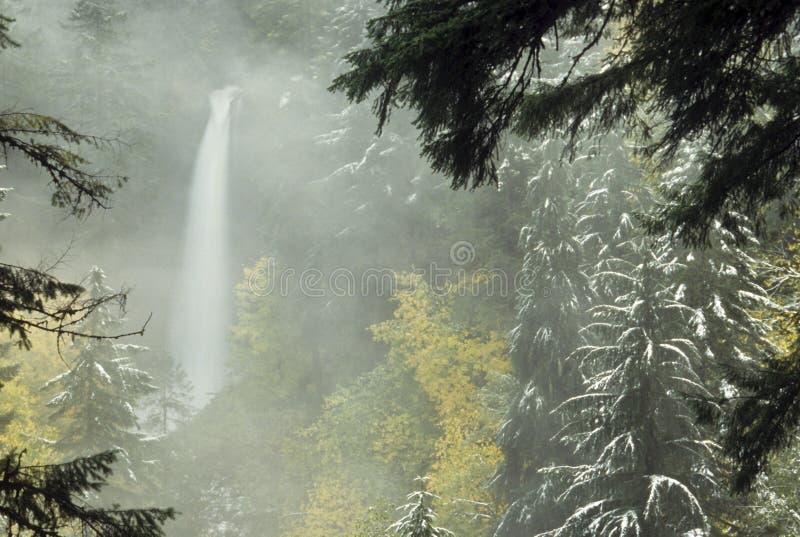 Cascades à écriture ligne par ligne en hiver image libre de droits