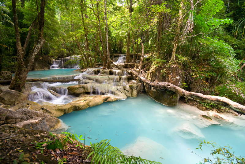 cascades à écriture ligne par ligne tropicales de jungle images stock