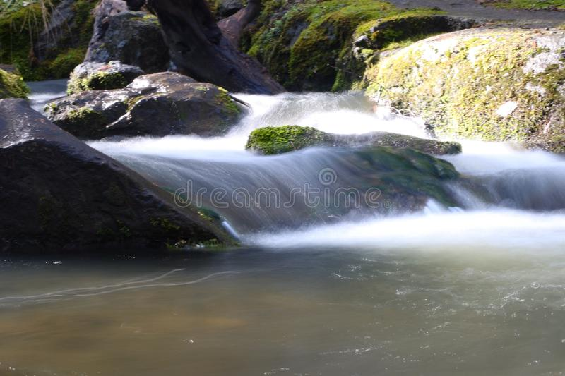 Download Cascades photo stock. Image du vancouver, île, serein - 87702192
