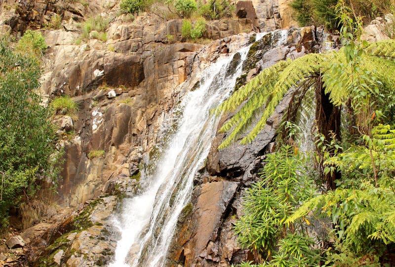 Cascades australiennes photographie stock libre de droits