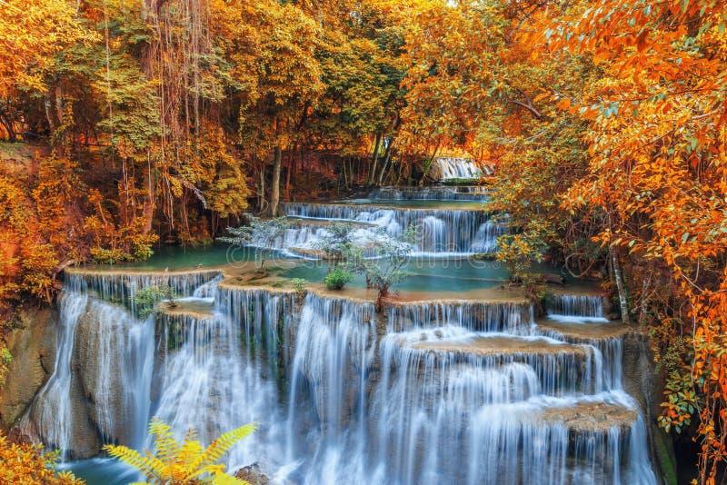 Cascades d'automne photos libres de droits
