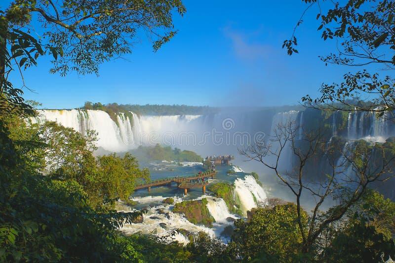 Cascades d'Iguazu photo libre de droits