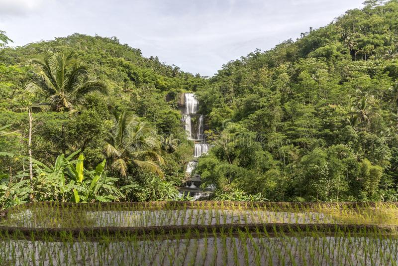 Cascades de Curug Nangga situées dans la ville de Bogor, Java occidental, Indonésie photographie stock libre de droits