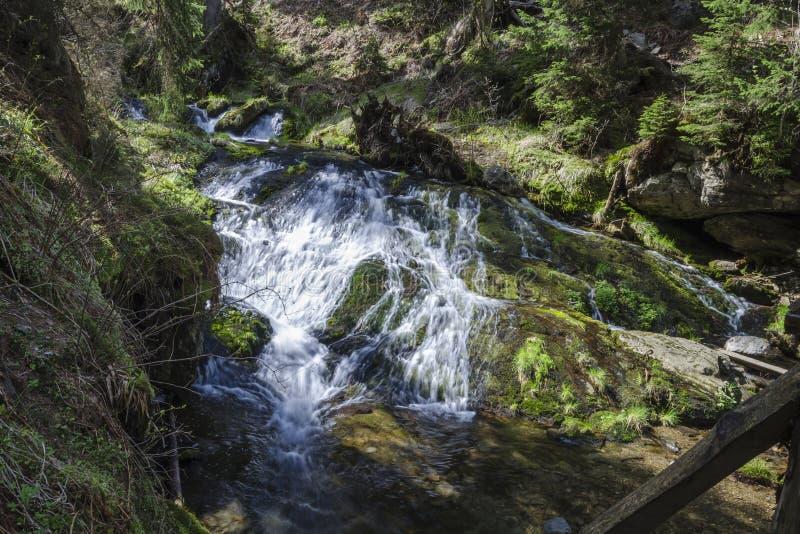 Cascades de l'Opava blanc photographie stock