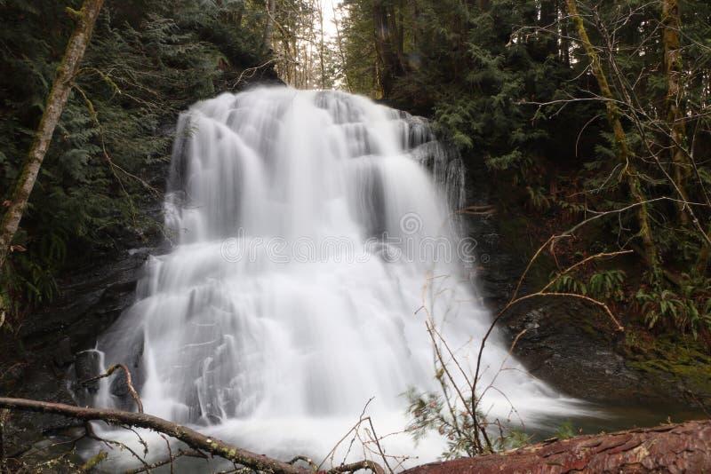 Download Cascades De Rivière De Chasse Image stock - Image du fleuve, chasse: 87702219