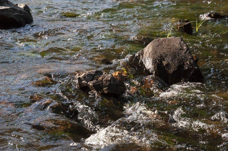 Cascades en été L'espace libre et l'eau douce tombent vers le bas Teintes de vert, de bleu et de blanc Il y a les pierres grises  images stock