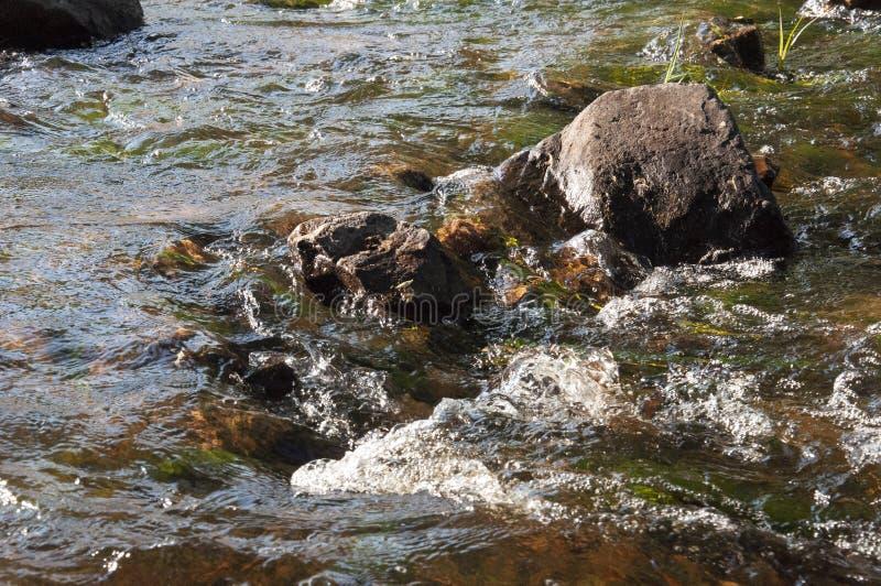Cascades en été L'espace libre et l'eau douce tombent vers le bas Teintes de vert, de bleu et de blanc Il y a les pierres grises  images libres de droits