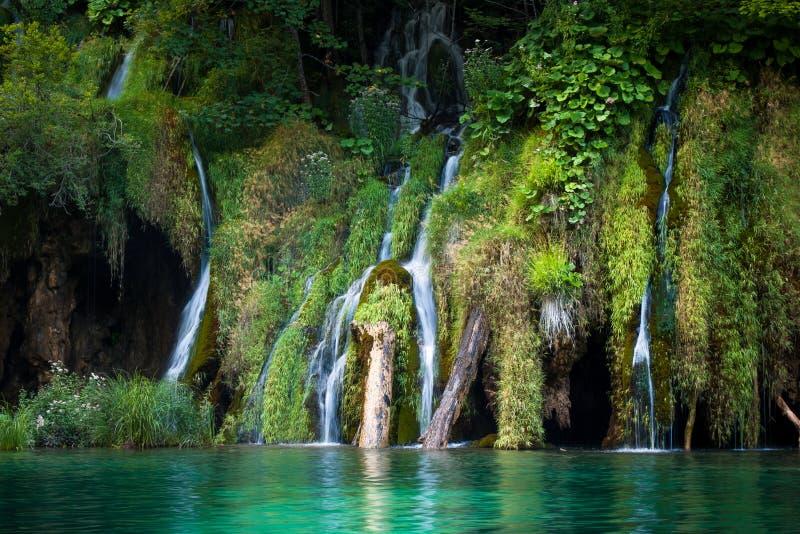 Cascades et lacs, lacs Plitvice, parc national, forêt, Croatie photo libre de droits