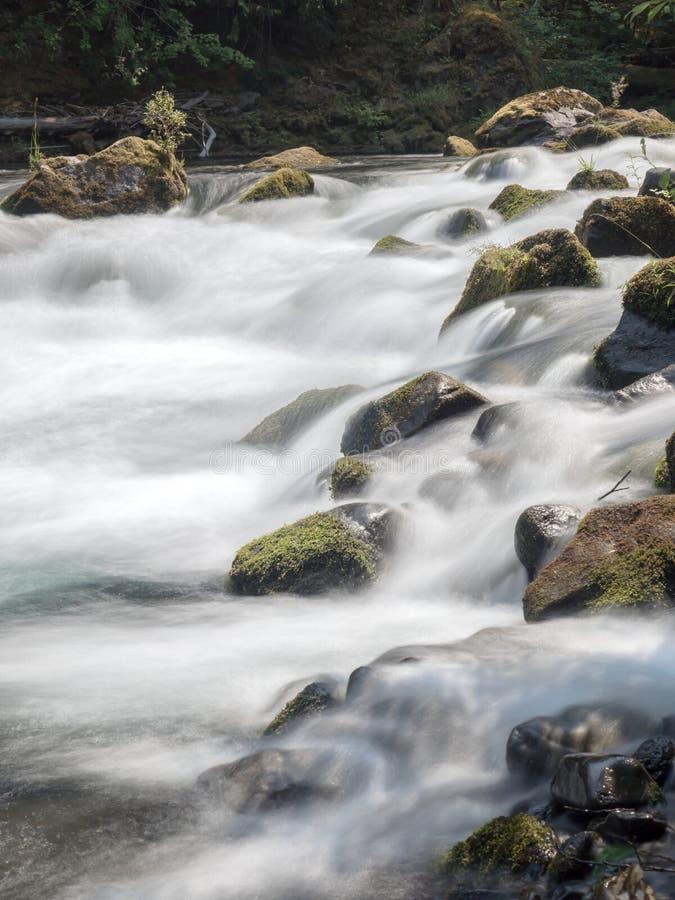 Cascades et rondins et roches moussus image libre de droits