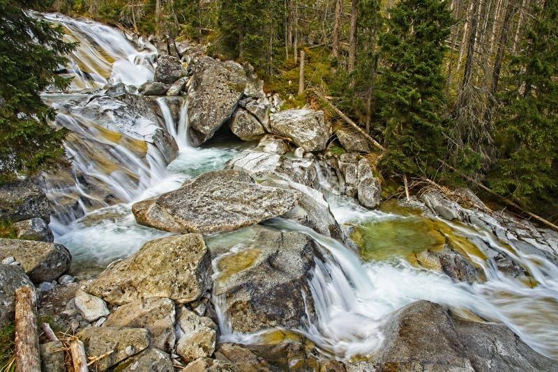 Cascades froides de grincement image libre de droits