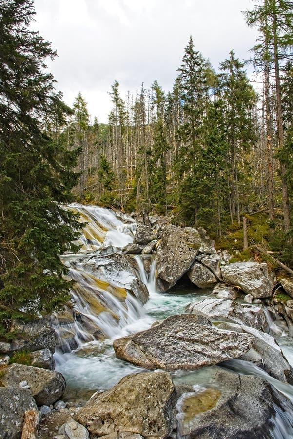 Cascades froides de grincement photo libre de droits