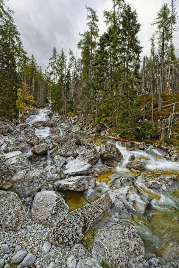 Cascades froides de grincement photo stock