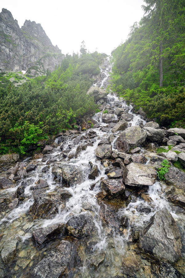 Cascades of mountain creek in Tatra National Park