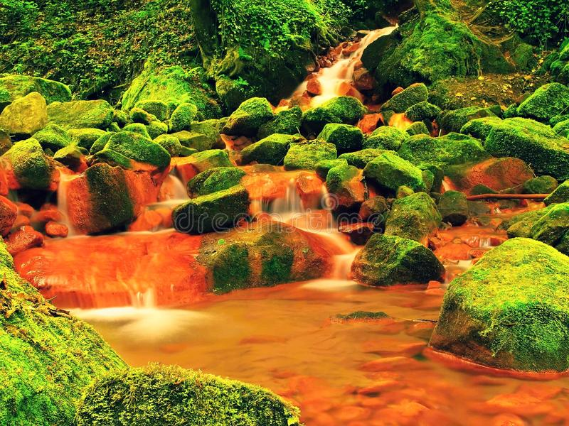 Cascades in rapids of mineral water. Red ferric sediments on big mossy boulders between ferns. royalty free stock image