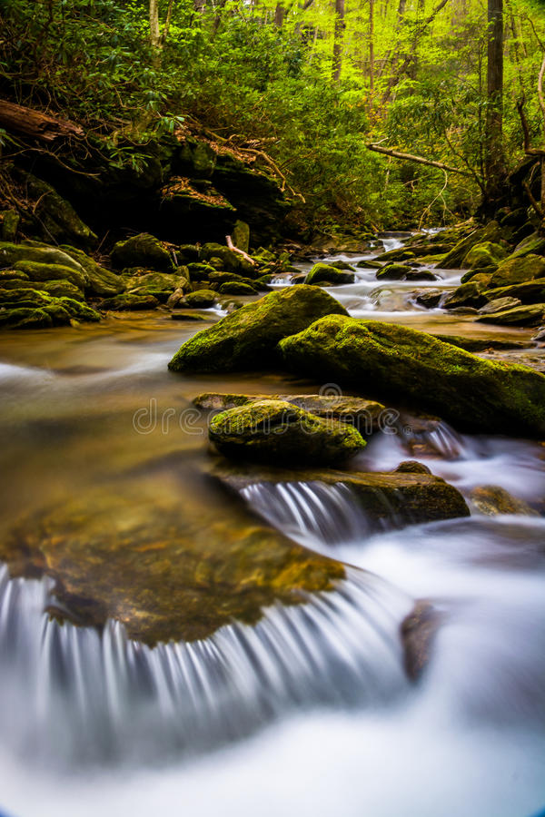 Cascades on a stream in a lush forest in Holtwood, Pennsylvania. Cascades on a stream in a lush forest in Holtwood, Pennsylvania royalty free stock photo