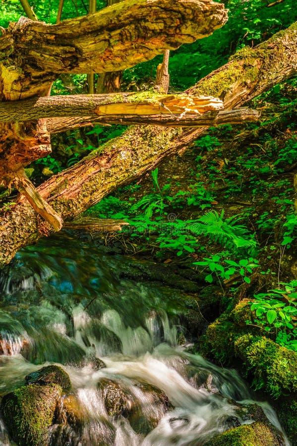 Cascades sur la rivière sous des ventis photo stock