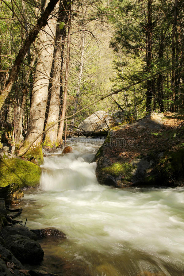 Download Cascades stock image. Image of conservation, lush, mountains - 33290605