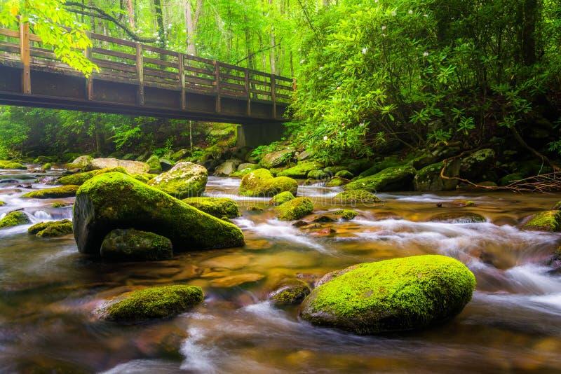Cascades and walking bridge over the Oconaluftee River stock photos