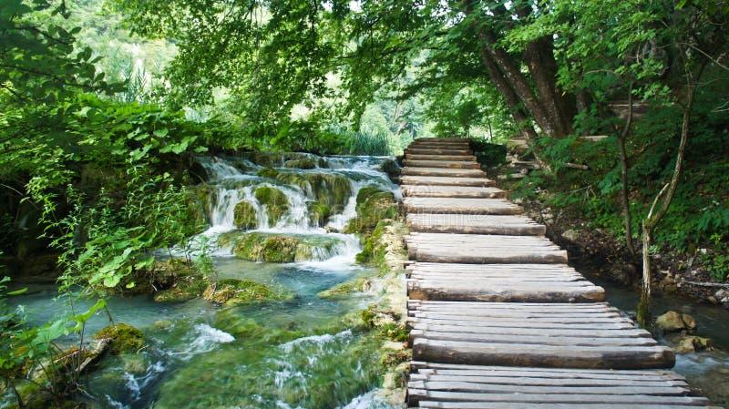 Cascadewatervallen en houten weg over het water, Plitvice-Meren in Kroati?, Nationaal Park stock afbeelding