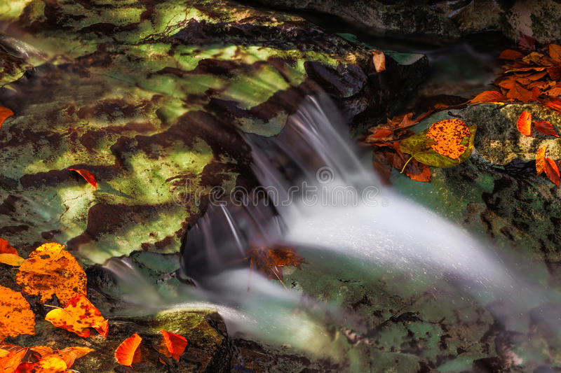 Cascading Autumn Brook. Water flows over a limestone ledges in a creek surrounded by colorful fall leaves and lit with dappled early morning sunlight royalty free stock image