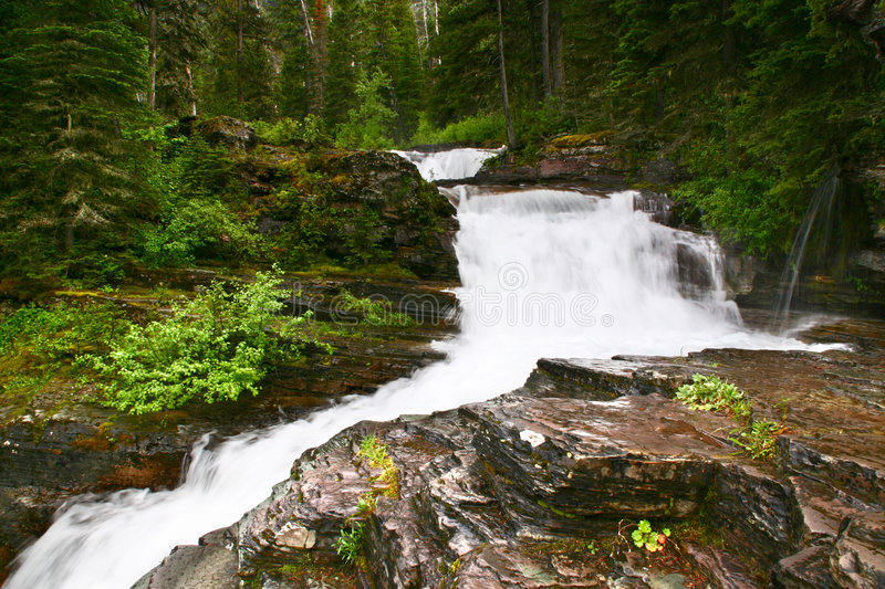 Cascading Falls, Glacier National Park, Montana Royalty Free Stock Images