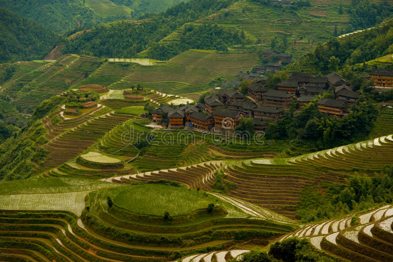 Cascading Flooded Rice Terraces Village Longji stock photography