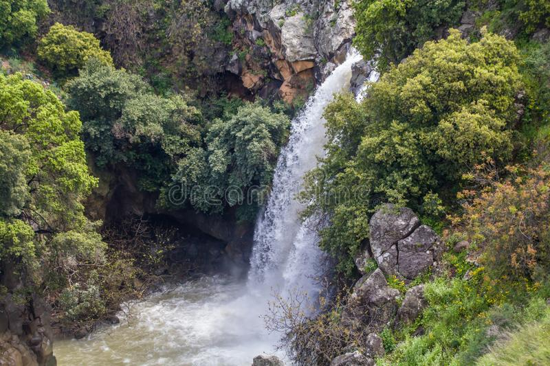 Cascading Saar Waterfalls slashes through Saar river gorge. Spring time in the Golan Heights stock photography